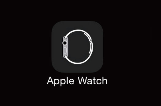 How to Install the Apple Watch App on Your iPhone if It's Gone Missing -  Cydia Geeks